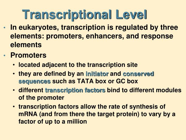 Transcriptional Level