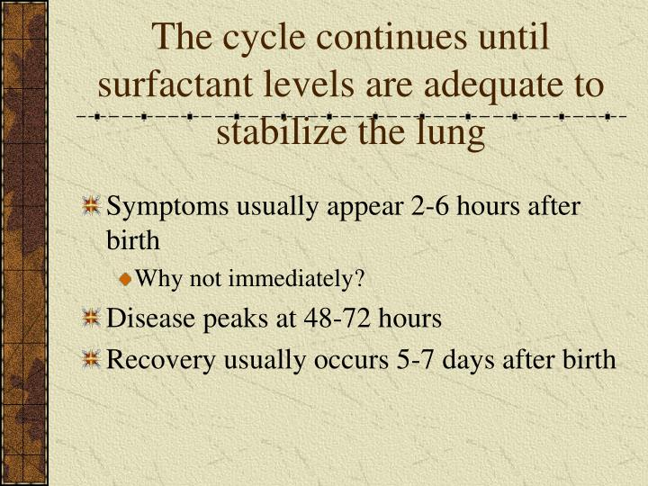 The cycle continues until surfactant levels are adequate to stabilize the lung