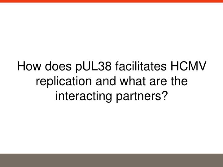 How does pUL38 facilitates HCMV replication and what are the interacting partners?