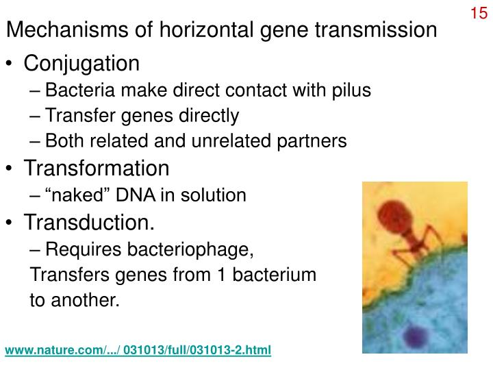 Mechanisms of horizontal gene transmission
