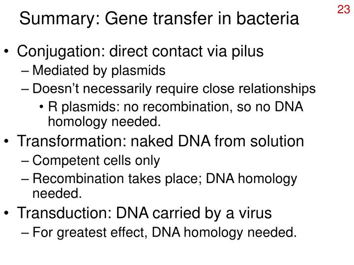 Summary: Gene transfer in bacteria