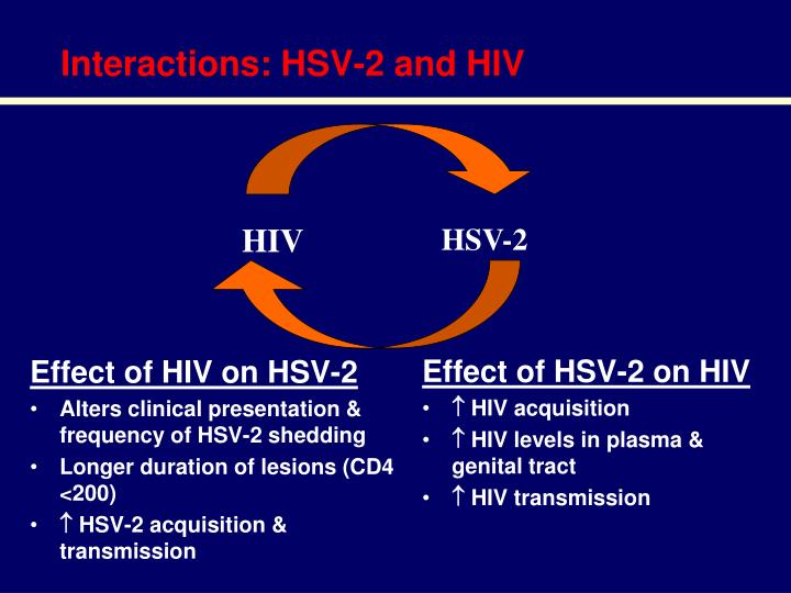 Interactions hsv 2 and hiv