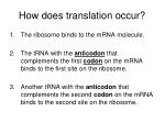 how does translation occur