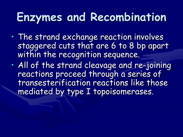 Enzymes and Recombination