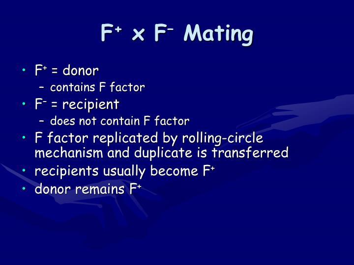 F x f mating