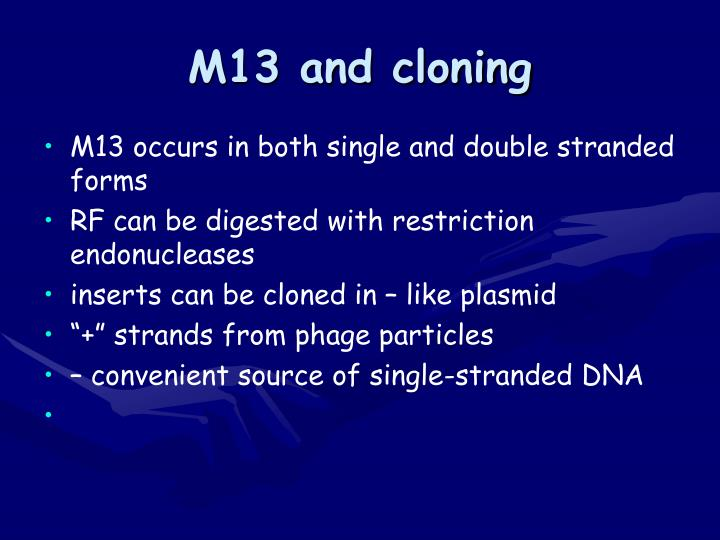 M13 and cloning
