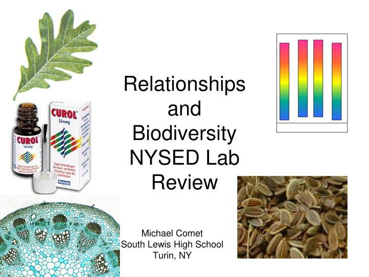 relationships and biodiversity nysed lab review n.