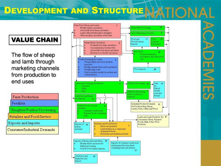Development and Structure