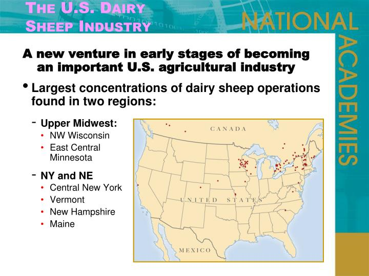 The U.S. Dairy
