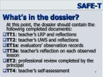 what s in the dossier