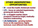 other underwriting opportunities