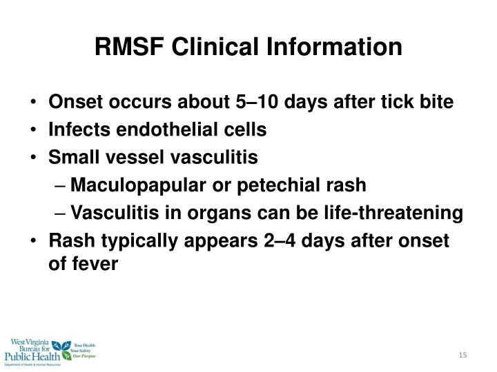 RMSF Clinical Information