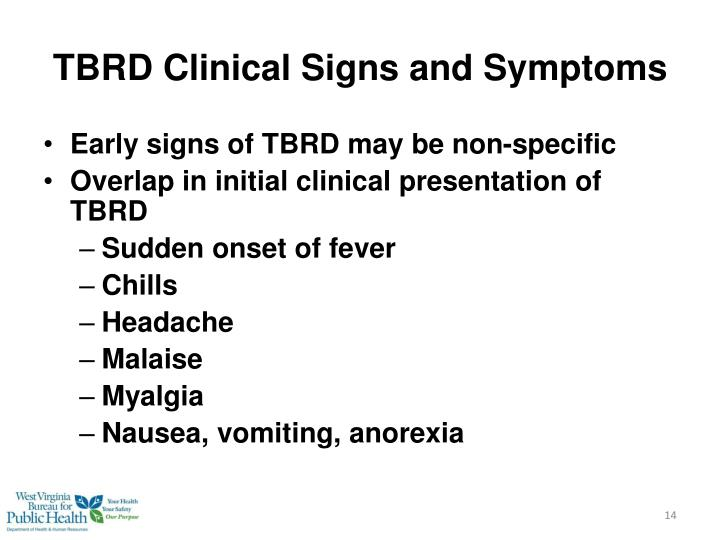 TBRD Clinical Signs and Symptoms