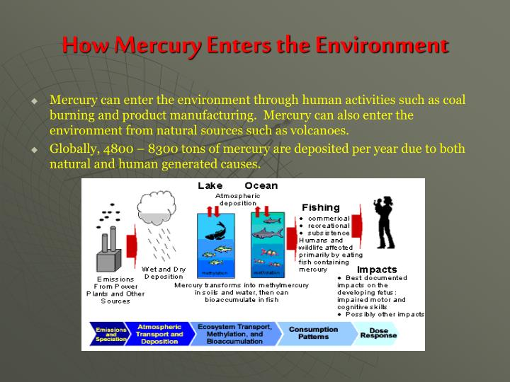 How Mercury Enters the Environment