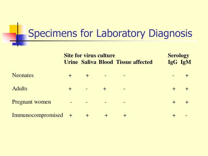 Specimens for Laboratory Diagnosis
