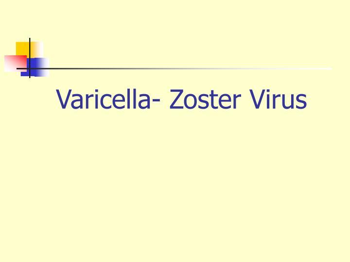 Varicella- Zoster Virus