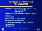 business improvement possibilities