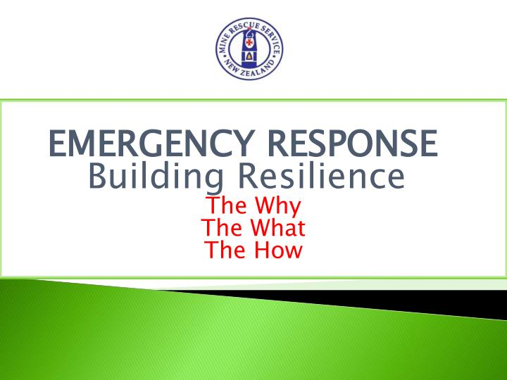 emergency response building resilience the why the what the how n.