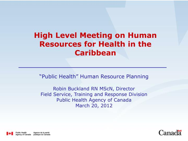 high level meeting on human resources for health in the caribbean n.