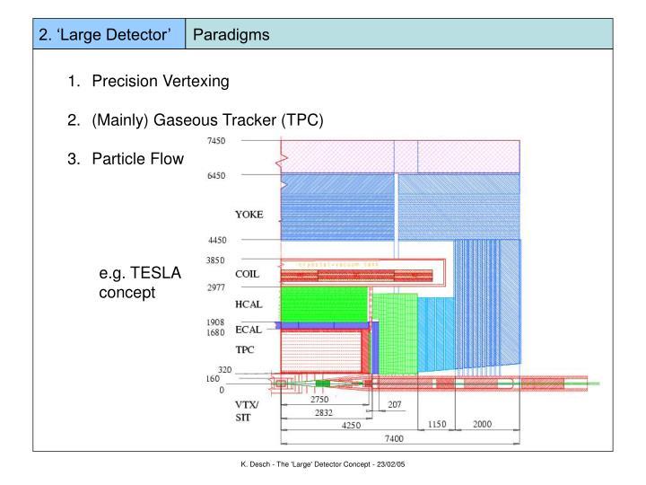 2. 'Large Detector'     Paradigms