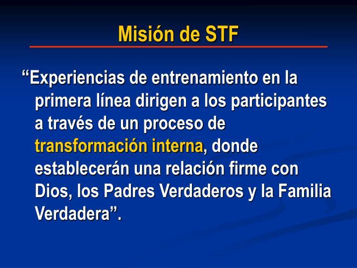Misión de STF