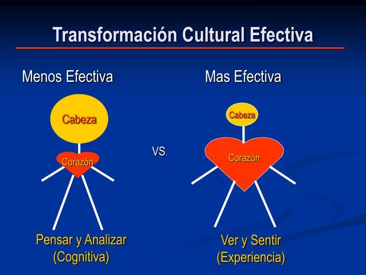 Transformación Cultural Efectiva