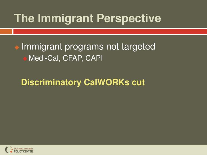 The Immigrant Perspective
