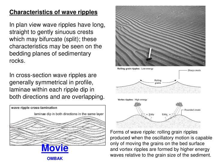 Characteristics of wave ripples