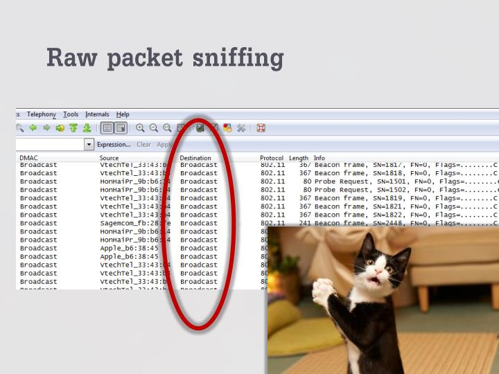 Raw packet sniffing