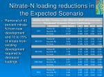 nitrate n loading reductions in the expected scenario