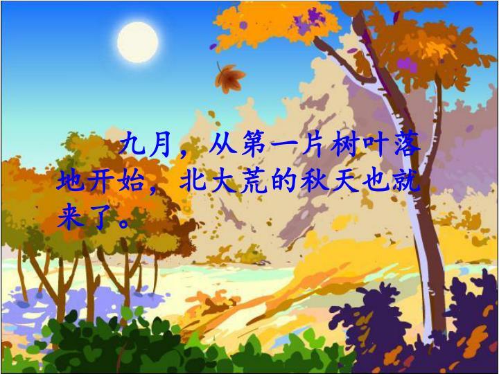 九月,从第一片树叶落地开始,北大荒的秋天也就来了。