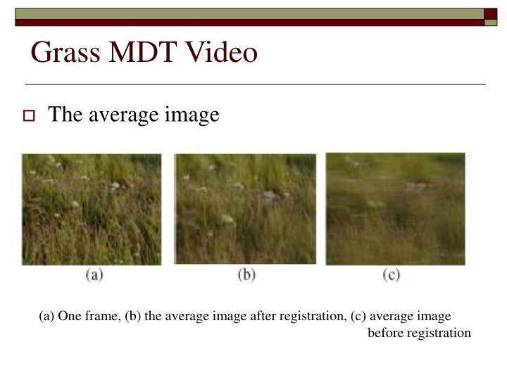 Grass MDT Video