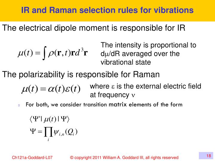 IR and Raman selection rules for vibrations