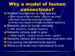 why a model of human connections
