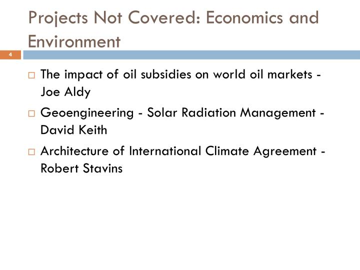 Projects Not Covered: Economics and Environment