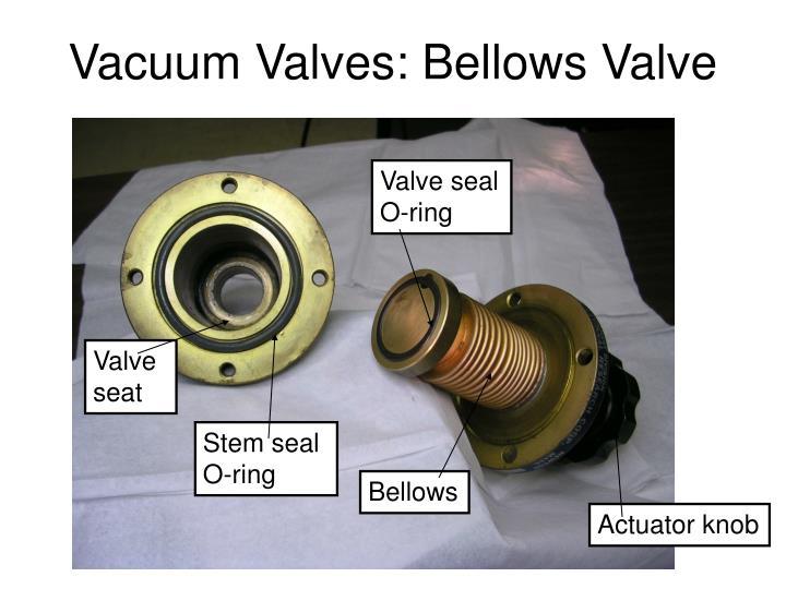 Vacuum Valves: Bellows Valve