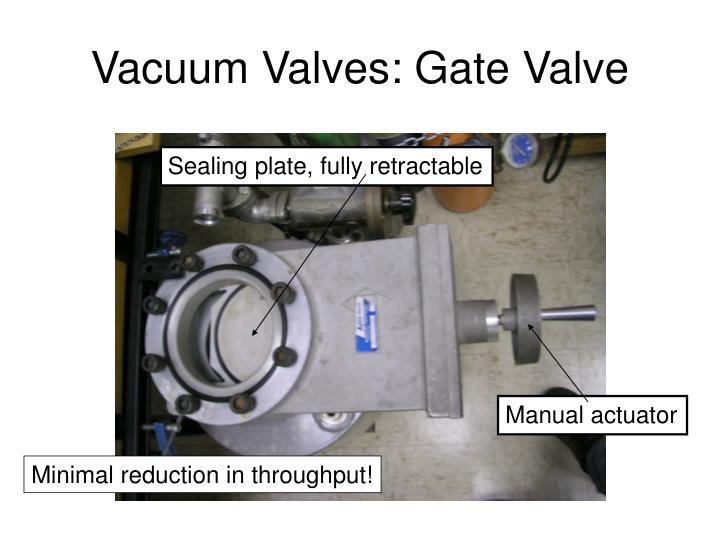 Vacuum Valves: Gate Valve