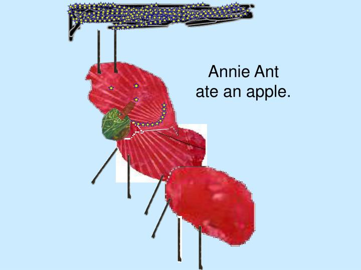 Annie ant ate an apple
