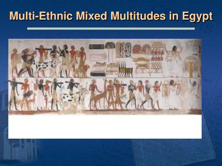 Multi-Ethnic Mixed Multitudes in Egypt
