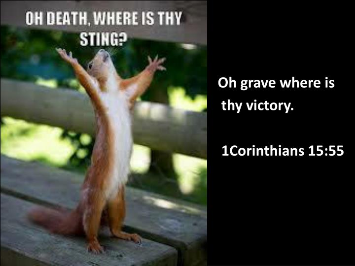 oh grave where is thy victory 1corinthians 15 55 n.