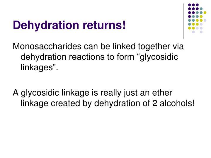 Dehydration returns!