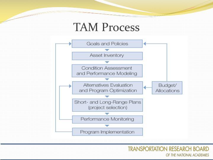 TAM Process