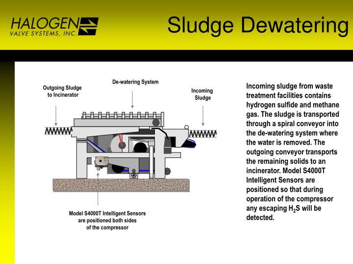 Sludge Dewatering