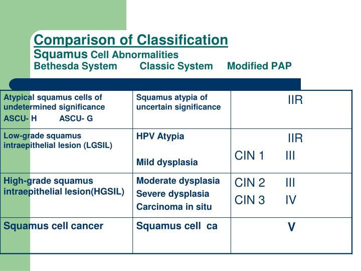 Comparison of Classification