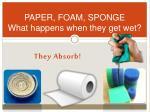 paper foam sponge what happens when they get wet
