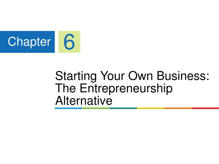 Starting your own business the entrepreneurship alternative