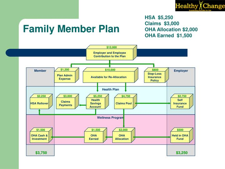 Employer and Employee Contribution to the Plan