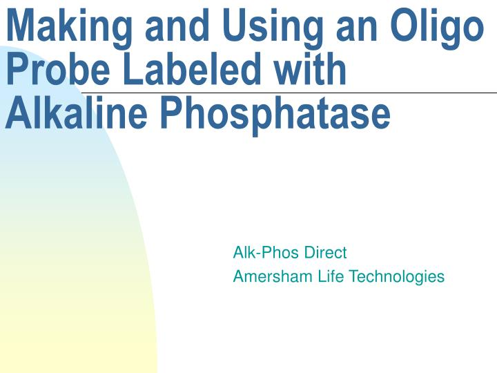 making and using an oligo probe labeled with alkaline phosphatase