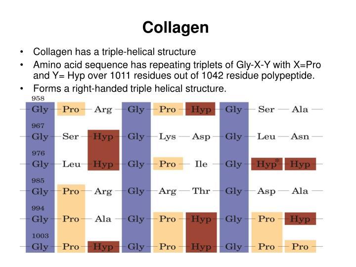 Collagen1