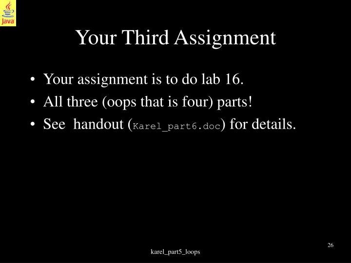 Your Third Assignment